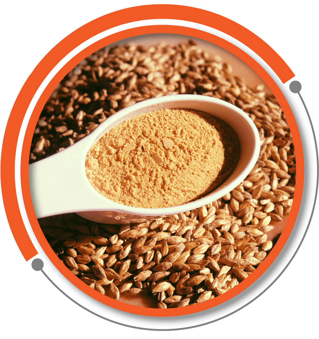 Malt Powder - Malt Extract Powder (Non-Diastatic) Manufacturer