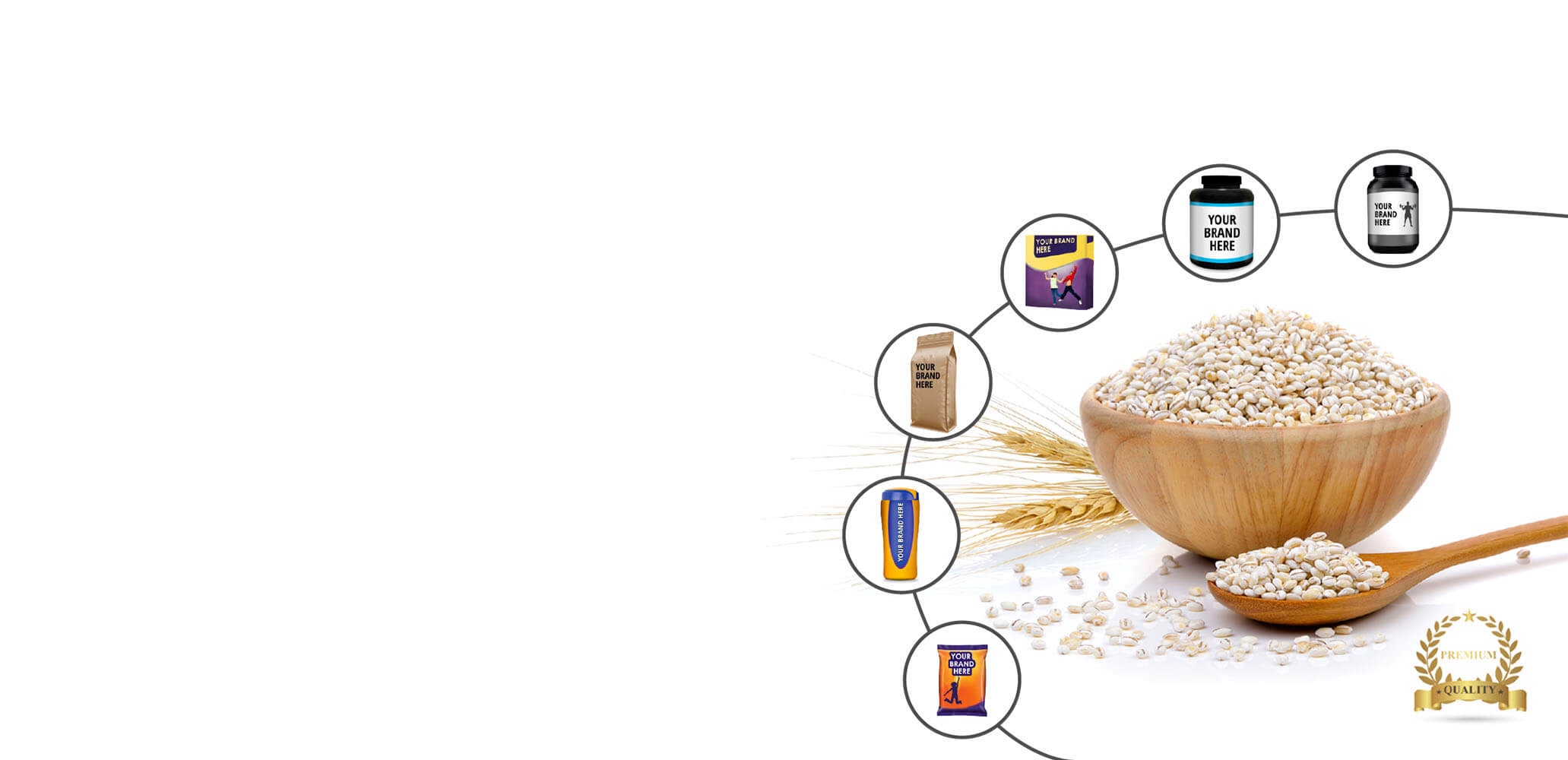 Malt Based Foods, Sports Nutrition, Protein Powder by Private Labelling  and Contract Food Manufacturing Companies India.